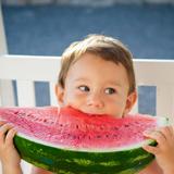 Kleiner Junge isst ein großes Stück Wassermelone © Viktor Pravdica